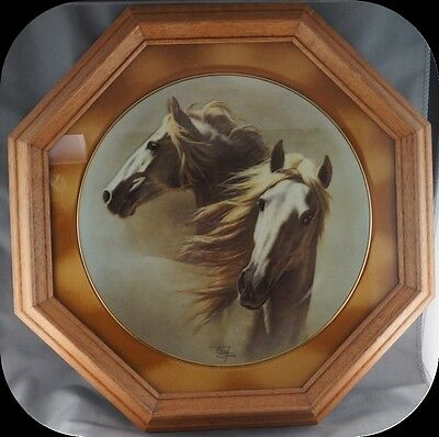 Fred Stone The Andalusion Horse Collector Plate Limited to 19500 FRAMED