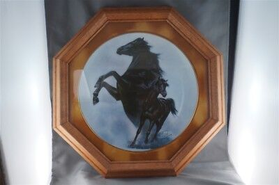 Fred Stone The Black Stallion Horse Collector Plate Limited to 19500 FRAMED