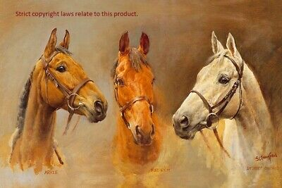 Desert Orchid Red Rum Arkle We Three Kings Large Sue Crawford