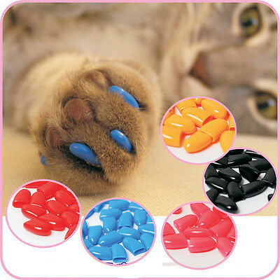 20Pcs Soft Pet Cat Paws Grooming Off Nail Claw Contrlo Cap+Adhesive Glue Y