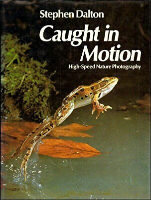 Caught in Motion: High Speed Nature Photography by Dalton, Stephen Hardback The