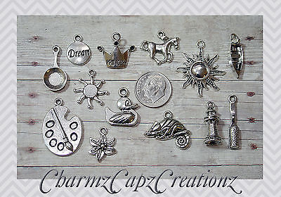 13pc Tangled/Rapunzel Silver Charm Set Lot Collection/Jewelry/Princess,Chameleon