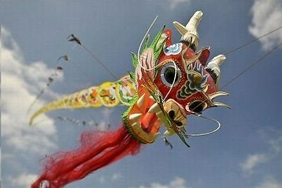 RARE COLLECTIBLE! Long Chinese Classical Dragon Kite