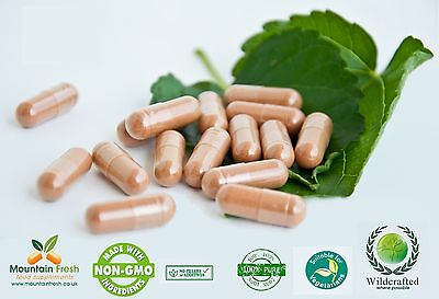 Organic Marshmallow Root Althaea Officinalis Pure Herb Capsules 100 X 100mg