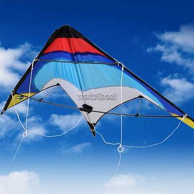 Dual Line Flying Sport Outdoor Activiy Triangle Activiy Beach Stunt kite WST