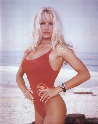PAM ANDERSON POSTER ~ BAYWATCH SWIMSUIT 16x20 Pinup Pamela