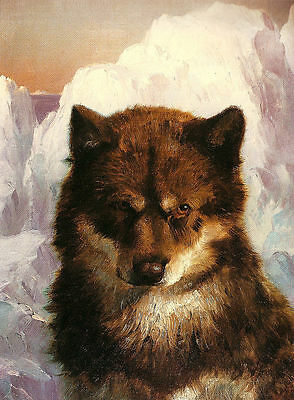 Excellent Oil painting Oosisoak wild animals wolf in winter landscape on canvas
