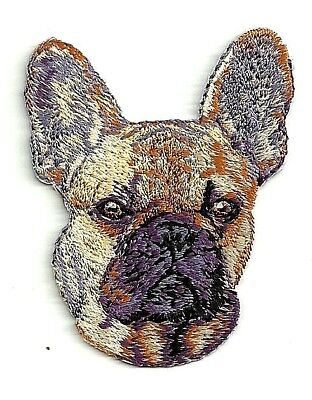 """2 1/8"""" x 2 5/8"""" French Bulldog Portrait Dog Breed Embroidery Patch"""