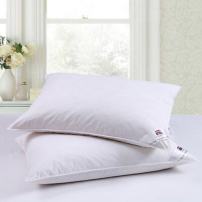 Luxury Goose Feather Down Pair Pillow Extra Filling Comfortable Hotel Quality
