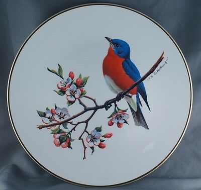 Don Eckelberry Avon Bluebird North American Songbird Plate Collector Plate