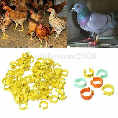 100Pcs 001-100 Numbered Leg Bands 18mm Rings for Clip On Poultry Hens Chicken