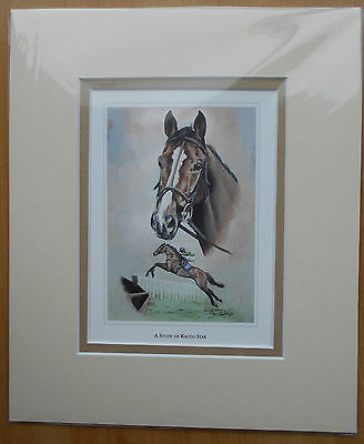 A Study of Kauto Star Double Mounted Fine Art Picture Print  Horse Racing