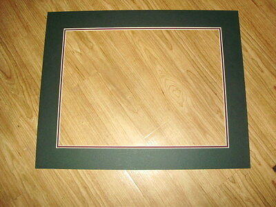 10 ~~ 16x20 Forest Green Mats - Prints Pictures Posters Matting