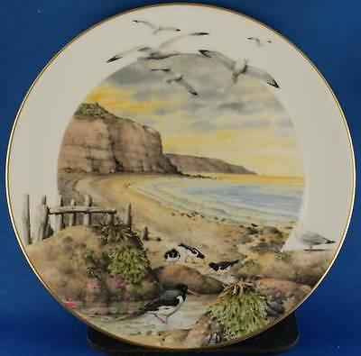 Peter Barrett Royal Worcester February On The Coast Collector Plate