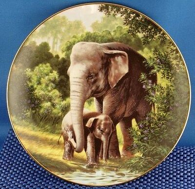 Will Nelson The Asian Elephant Collector Plate
