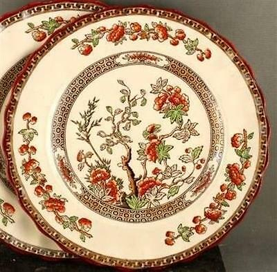 Copeland Spode India Tree Bread & Butter Plate Green Leaf (Four Available)