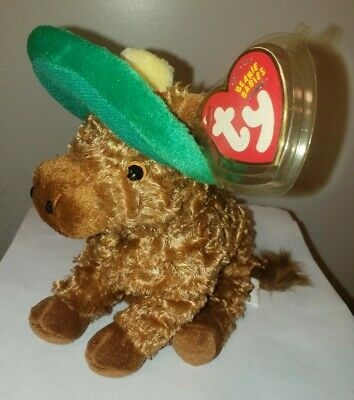 Ty Beanie Baby ~ SIESTA the Donkey ~ Internet Exclusive ~ MINT with MINT TAGS