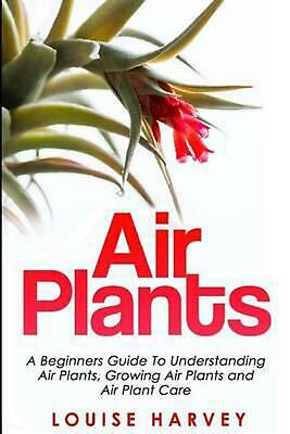 Air Plants: A Beginners Guide to Understanding Air Plants, Growing Air Plants an