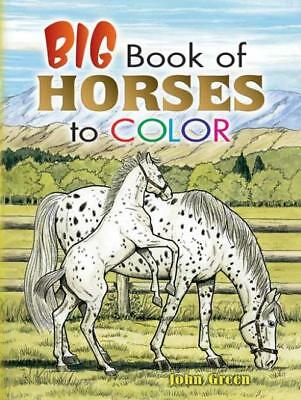 Big Book Of Horses To Color - John Green (Paperback) New