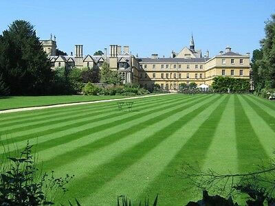 5kg PREMIUM DELUXE HARD-WEARING TOUGH BACK LAWN GRASS SEED CERTIFIED SEEDS