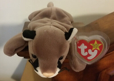 Ty Beanie Baby ~ CANYON the Cougar ~ MINT with MINT TAGS ~ RETIRED