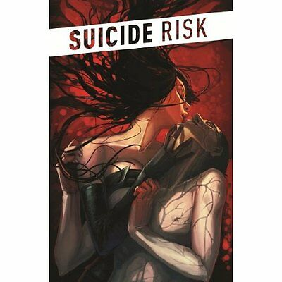 Suicide Risk Volume 1 - Paperback NEW Elena Casagrand 2013-12-13