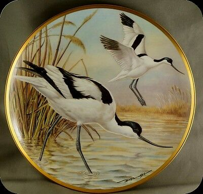 Bart Jerner Avocet Water Birds of the World Franklin Porcelain