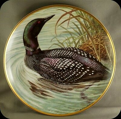 Bart Jerner Great Northern Diver Water Birds of the World Franklin Porcelain
