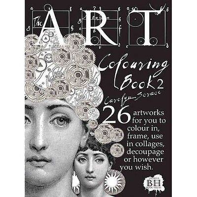 The Art Colouring Book 2 - Paperback NEW Carolyn Scrace  2013-03-26