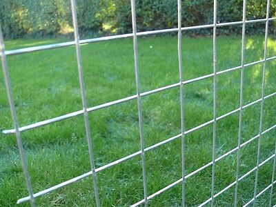 4xGalvanised Welded Wire Mesh Panels 2400(8')x1220(4') x 50x50x2.5mm c/wStaples