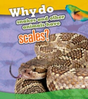 Why Do Snakes and Other Animals Have Scales? (Animal Body Coverin...
