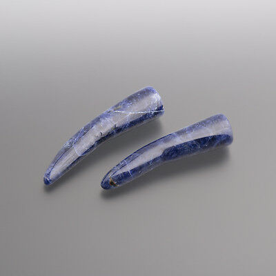 Sodalite Cabochon Denti 33 mm / SCATOLA