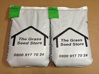 GRAZING LEY OVERSEEDING Grass Seed for Dairy Cows, Cattle & Sheep Pasture Repair