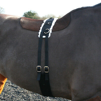 Nylon Fleece Lined Adjustable Lunging Roller + Nylon Cavesson + Padded Rein/line