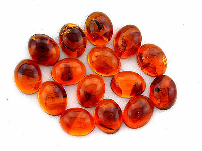 ONE 10x8 10mm x 8mm Oval Natural REAL Baltic Amber Cab Cabochon Gem Stone ES251