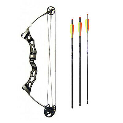 "Smk Adults Archery Solid Limb Compound Bow 65Lb Draw Weight 28-31"" Draw Length"