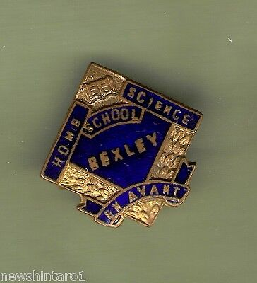 #d245.  Bexley  School Enamel   Lapel Badge