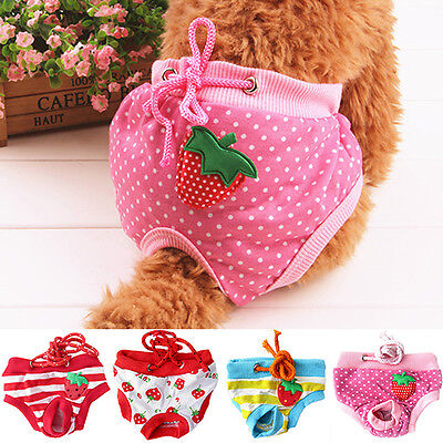 Female Pet Dog Puppy Diaper Pants Physiological Sanitary Nappy Strawberry Modern
