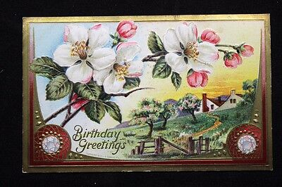 c.1910 Embossed Birthday Postcard with Apple Blossoms & Farm Series 601