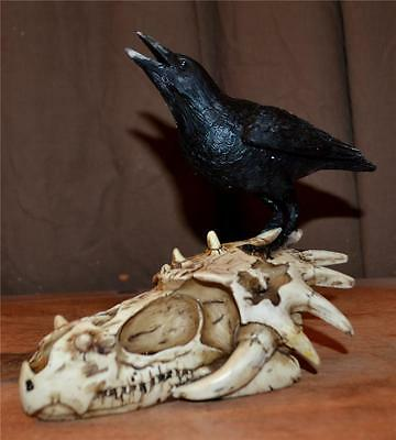 Nemesis Now RAVEN Skull of Corvax Sculpture Gothic Pagan Wiccan