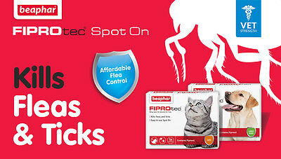 Beaphar FIPROtec Flea Spot On for Small Medium Large XL Dogs & Cats Fipronil
