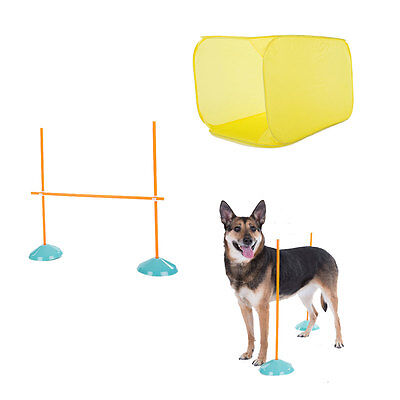 Outward Hound Dog Agility Starter Kit Indoor