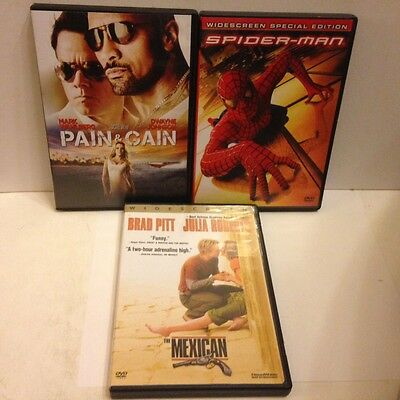 Lot of 3 Movies-Spiderman---The Mexican---Pain & Gain