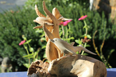 Dolphin Sealife Statue Parasite Mushroom wood carving Sculpture Bali art 8""