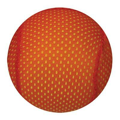 American Educational Products Ytc-308Am-Ea Mesh Covered Foam Ball 6 In.