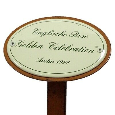 G1887: Rosenschild Emaille, Englische Rose Golden Celebration, Austin 1992