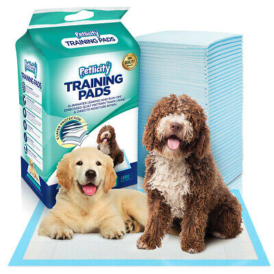 50-150 PCS LARGE PUPPY TRAINER TRAINING PADS TOILET PEE WEE MATS DOG CAT 60x60CM