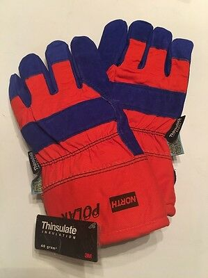 3M North Polar Winter Insulated Waterproof Leather Gloves, Large 70/8710NKP