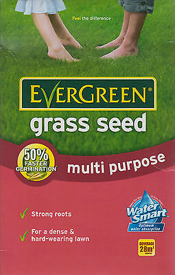 EverGreen Multi Purpose Grass Lawn Seed With Ryegrass 28m2 Coverage 840g