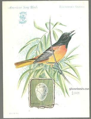 Victorian Trade Card Singer Sewing Machine American Song Birds Baltimore Oriole